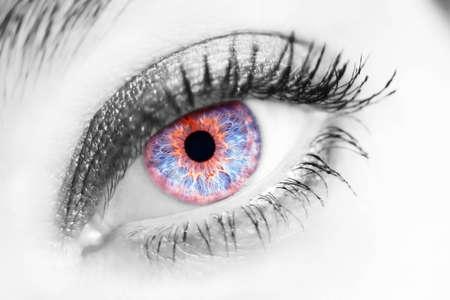 portrait of a beautiful female blue eye photo
