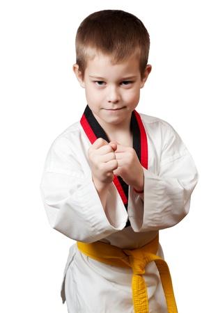 Young boy training karate   Stock Photo - 12921726