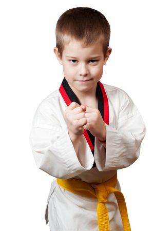 Young boy training karate Stock Photo - 12921726
