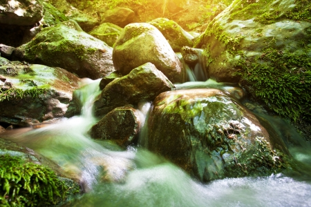 landscape  forest stream with a waterfall rocks and green moss Stock Photo