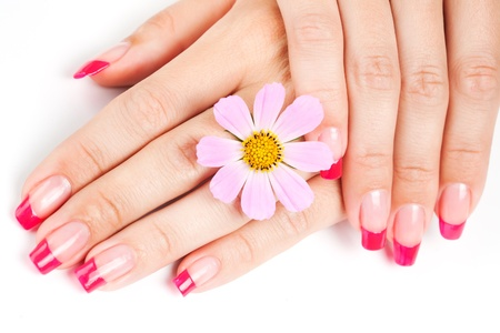 nail spa: Woman hands with pink manicure, pink flower