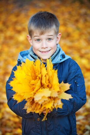 happy boy on a background of yellow autumn leafs photo