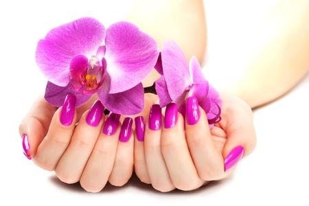 femelle avec orchidée rose isolé