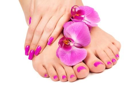 mani e piedi: rosa manicure e pedicure con un fiore orchidea isolato Archivio Fotografico