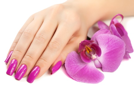 female hand with orchid flower  isolated Stockfoto