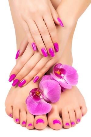 ピンクのマニキュア、ペディキュア、蘭の花を持つ