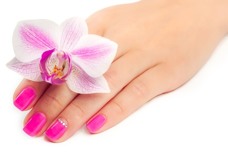 manicure with orchid flower  isolated photo