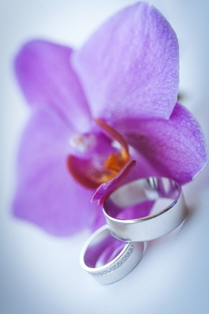 beautiful wedding rings Stock Photo