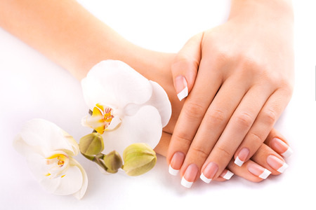 beautiful french manicure  on white photo