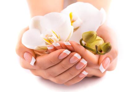 orchidee: bella french manicure su bianco