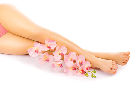 Relaxing pedicure with a pink orchid flower photo