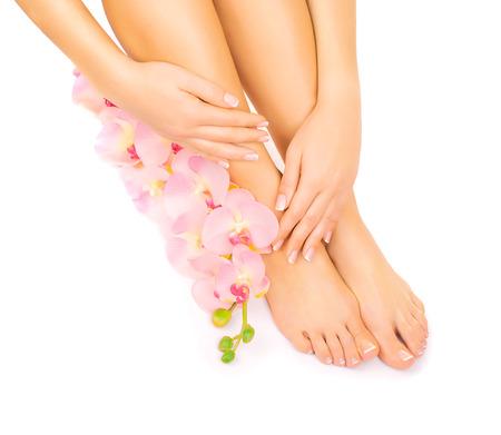 frans: manicure en pedicure met een roze orchidee bloem Stockfoto