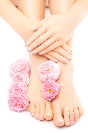 french pedicure: french pedicure and manicure with a pink rose flower isolated on the white