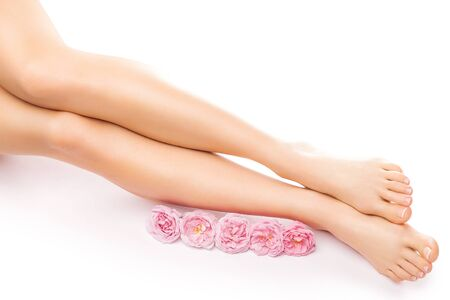 french pedicure: french pedicure with a pink rose flower isolated on the white