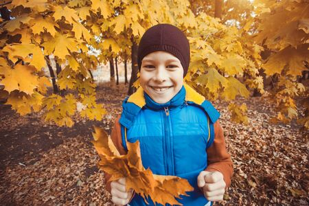 happy kid on a background of autumn trees photo