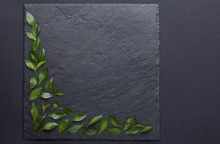 fresh green leaves on a black slate board Stok Fotoğraf