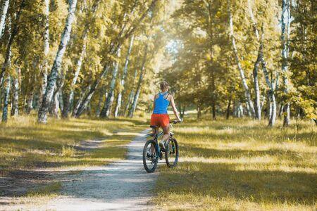 cyclist cycling mountain bike on birch forest trail Stok Fotoğraf