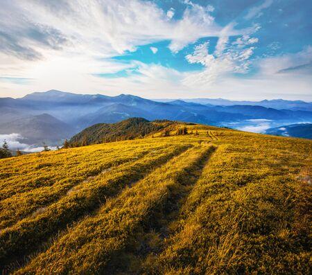 beautiful sunrise in the Carpathian mountains