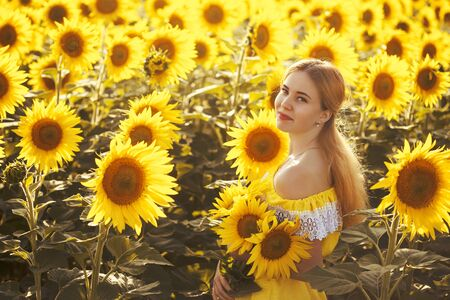 Cute woman in a blossoming sunflower field