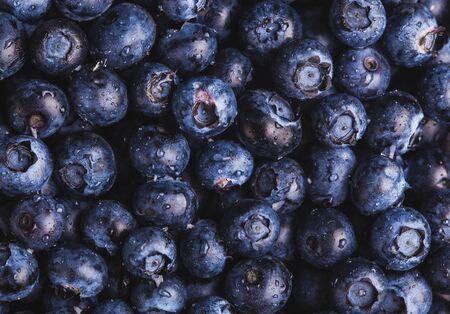ripe blueberry berries texture Stok Fotoğraf
