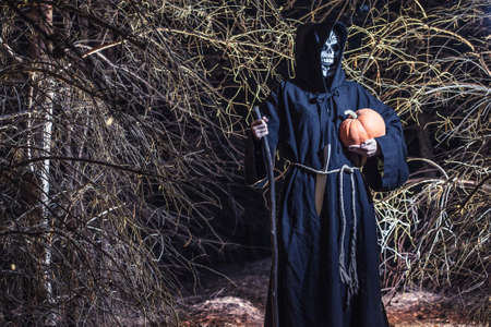Woman devil ghost demon costume horror and scary she holding pumpkin in hand in the forest. The vampire ghost people, Happy Halloween day concept