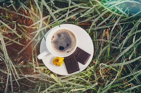 Cup of coffee with chocolate on the frozen grass covered with frost