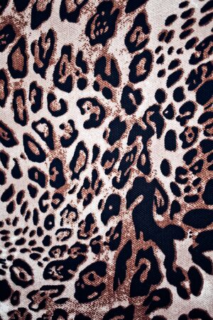 chetah: wild animal pattern background or texture