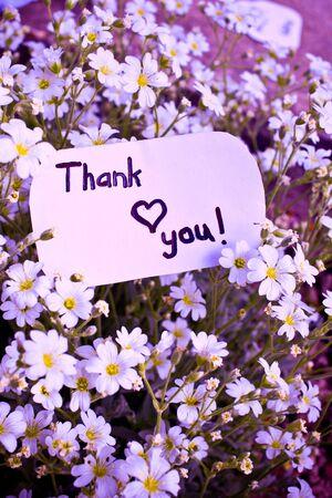 agradecimiento: Bandera con usted y flores gracias.