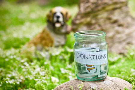 Munten in glazen pot met geld donaties label, financiële concept. Stockfoto