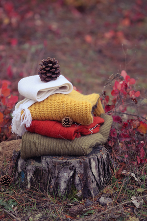 highboy: pile knitted sweaters in the autumn wood Stock Photo