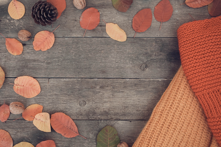 Autumn background for the text.