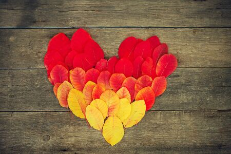 Autumn multi-colored leaves (gradient) in the form of heart on a wooden background