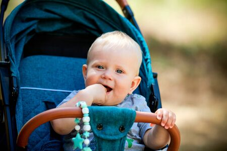 Baby in sitting stroller on nature 写真素材