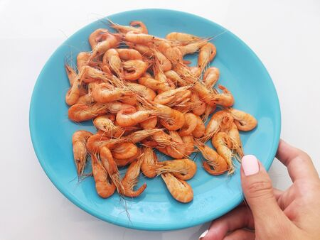 Women is hand holds blue plate with delicious little shrimps and prawns from black sea . Seafood and mediterranean cuisine concept Stok Fotoğraf