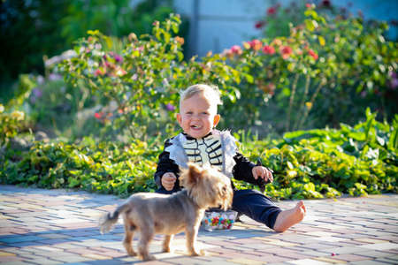 Little boy sits in a skeleton suit next to a dog. Halloween holiday. Copy space 版權商用圖片