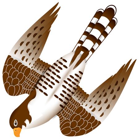 Illustratie van een schattige valk die in de vlucht aanvalt