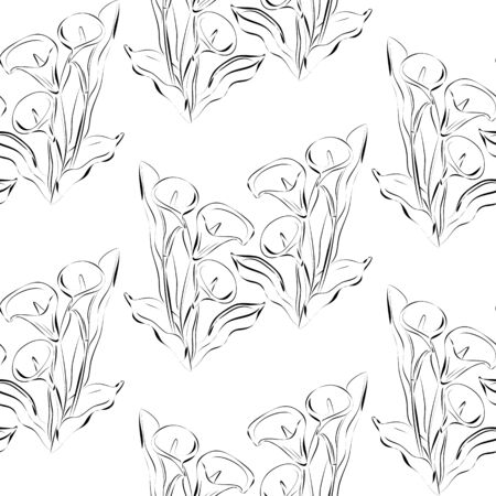 calas blancas: Seamless pattern with flowers callas. Black and white background. All elements are not cropped and hidden under mask.