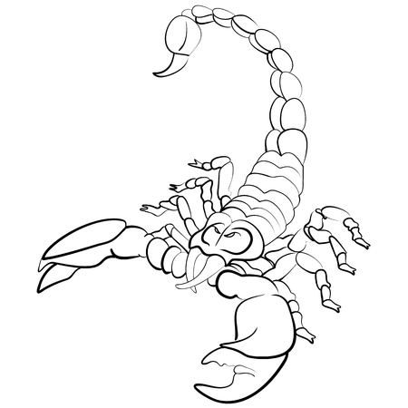 cartoon scorpion: Hand drawn astrological zodiac sign Scorpion or Scropio. Line art vector illustration of engraved horoscope symbol of insect. scorpion tattoo ink sketch