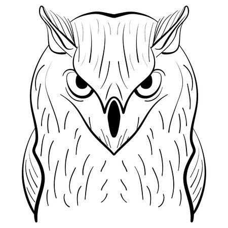 owl illustration: Hand drawn black white illustration owl fly bird. Art Coloring book owl . Cute Owl black and white sketch . Bird owl. Tribal owl. . Illustration owl Illustration