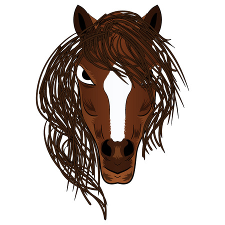 Vector illustration fierce looking brown stallion horse with a flowing mane Illustration
