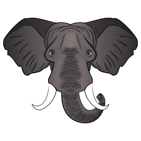 Hand drawn illustration cartoon elephant head. Wild Animal. Wild life. Ilustração
