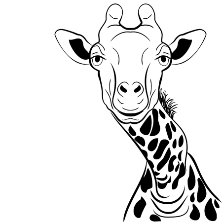 A graphical image of a giraffe head ink sketch on white background