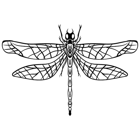 Hand drawn engraving Sketch of Dragonfly. Vector illustration tattoo handmade decorative