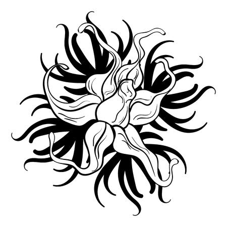 Tatuaggio fiore bianco e nero bellissimo fiore bianco e nero con pizzo, occhielli, elemento di design Archivio Fotografico - 82671921