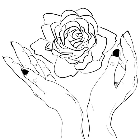 Hands holding a rose flower isolated outline hand drawn sketch line vector illustration. Illustration