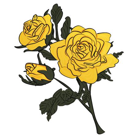 Yellow rose on green stem vector illustration