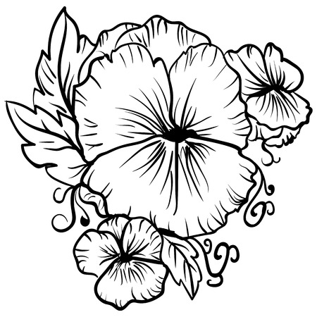 Elegant decorative pansy flowers, design element. Floral branch decoration Tattoo sketch pansies