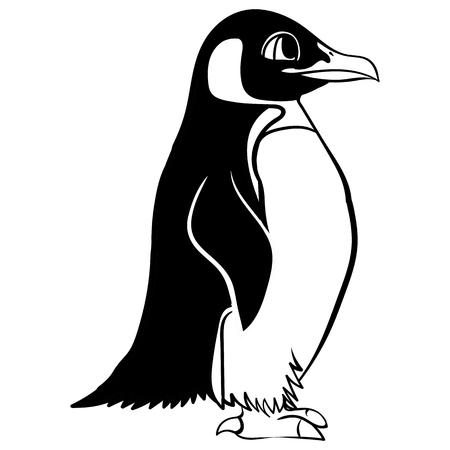 Vector cartoon black and white linear paint draw penguin vector illustration Illustration