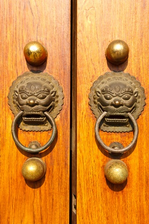 Wooden doors with lions photo