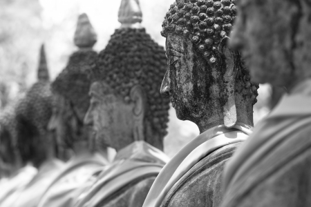 Black and white image of the Buddha Stock Photo - 16589488